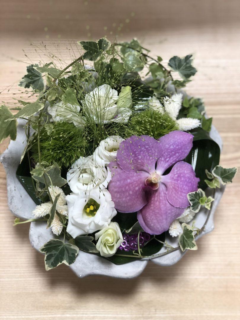 Fleuriste-Maifleurs-Douarnenez-fleurs-plaisir-anniversaire-remerciements-18