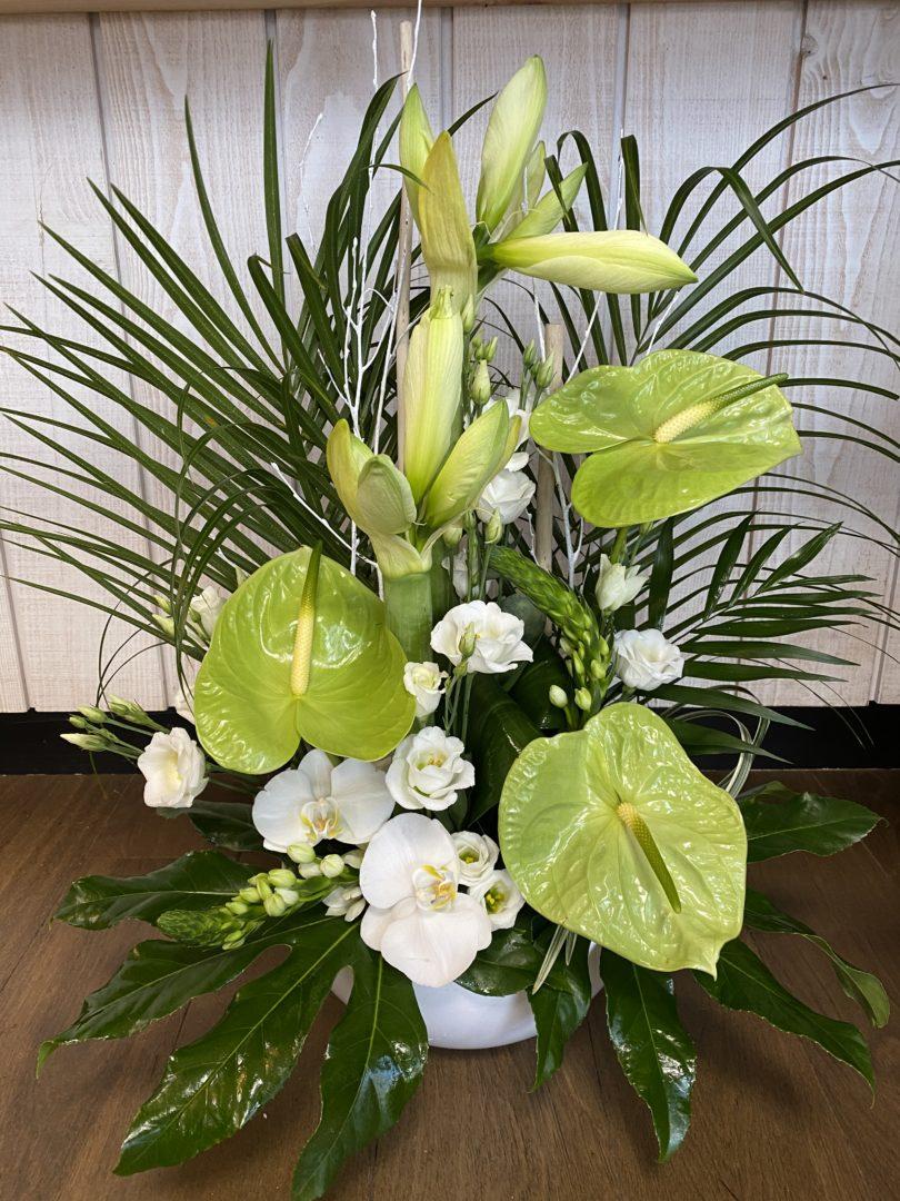 Fleuriste-Maifleurs-Douarnenez-fleurs-plaisir-anniversaire-remerciements-25